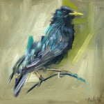 original oil painting of starling