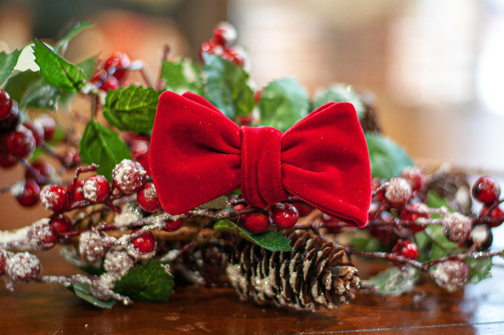 Red Velvet Bow Ties for the holidays