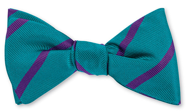hornets bow tie