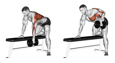 Baseball Strength Training: One Arm Dumbbell Row Benefits - OFG Blog