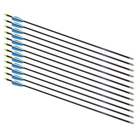 "30"" Fiberglass Arrows - 72 Arrows - Ohio Fitness Garage - Olympia -Arrows Equipment"