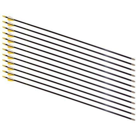 "30"" Safety Glass Archery Arrows - 72 Arrow Bulk Pack - Ohio Fitness Garage - Olympia -Arrows Equipment"
