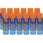 Krylon Athletic Paint - Orange (Case/12)