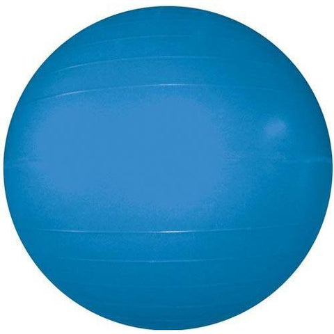 "Therapy/Exercise Ball - 55cm/22"" Dia. (Blue) - Ohio Fitness Garage - Olympia -Therapy/Exercise Balls Equipment"