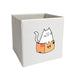 Box Cat Storage Bin