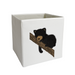 Black Bear Cub Storage Bin