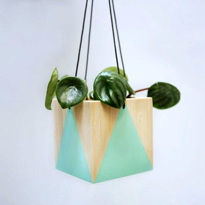 Hanging Planter Box - Mint