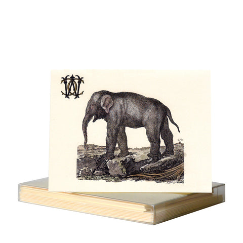 Elephant Notecards
