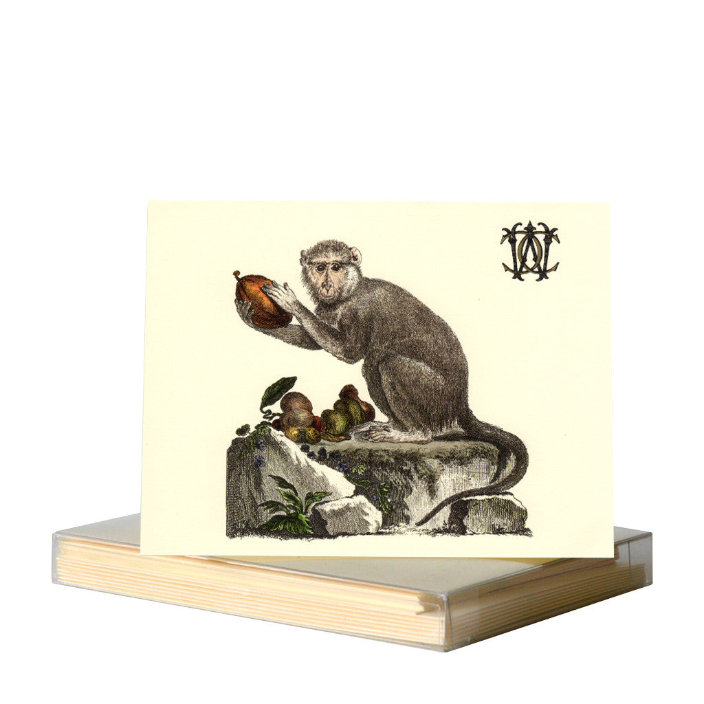 Monkey I notecards by Whim & Caprice