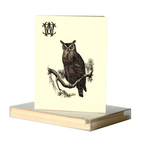 Owl notecards by Whim & Caprice