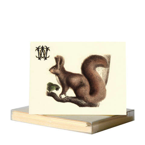 Red squirrel by Whim & Caprice