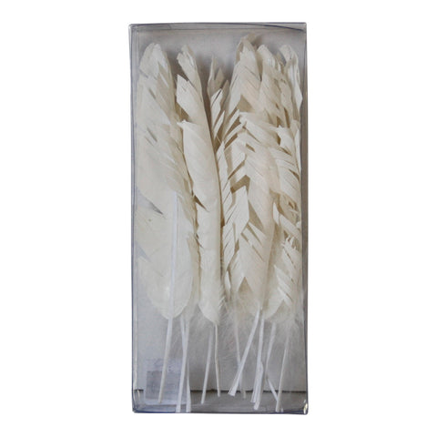 Box of Paper Feathers