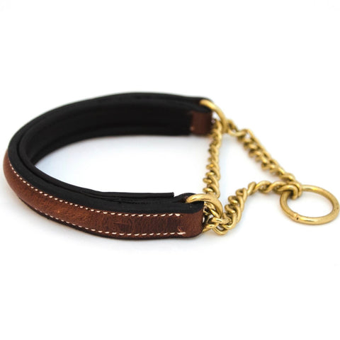Asti Leather Martingale Dog Collar
