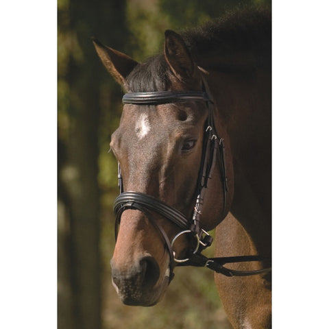 HDR Raised Padded Dressage Bridle