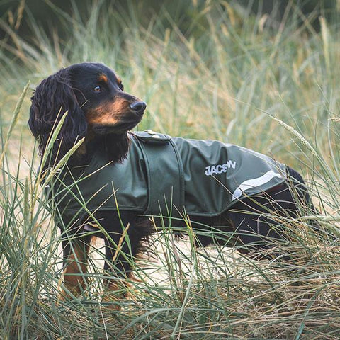Pippi Dog Coat -  Hunter Green