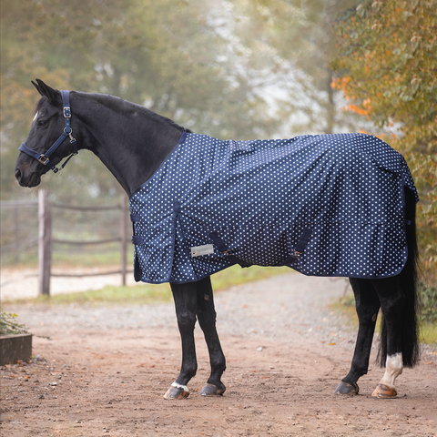 Waldhausen Dotty Light Turnout