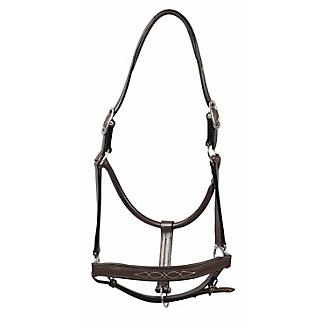 HDR Fancy Padded Leather Halter