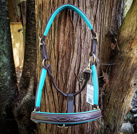 Pup & Pony Derby Halter Fancy Stitch - Turquoise