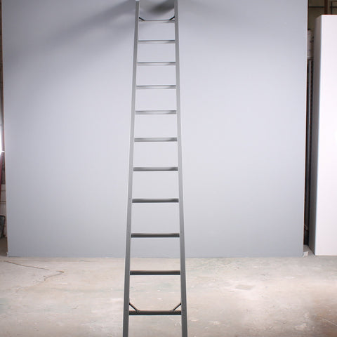 Ladder Leaning Gray 12ft