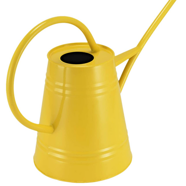 Watering Can Giana