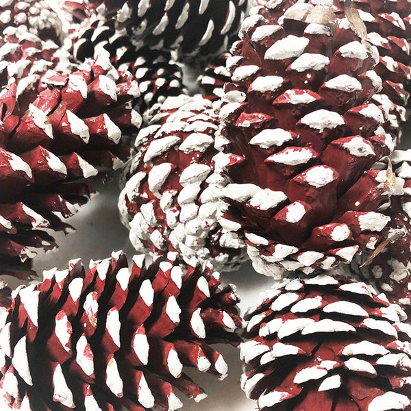 Pinecones Red
