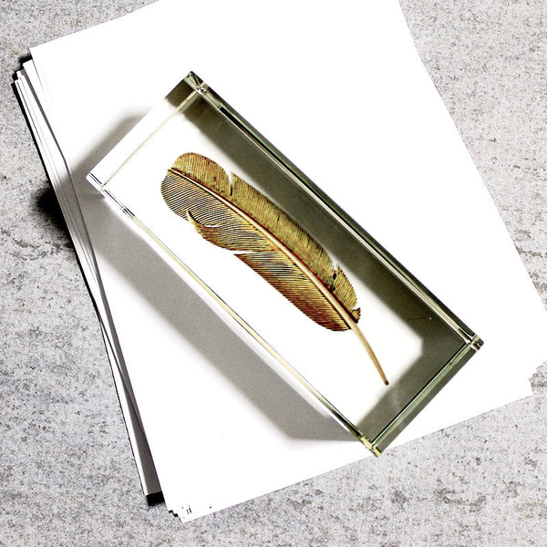 Paperweight Feather