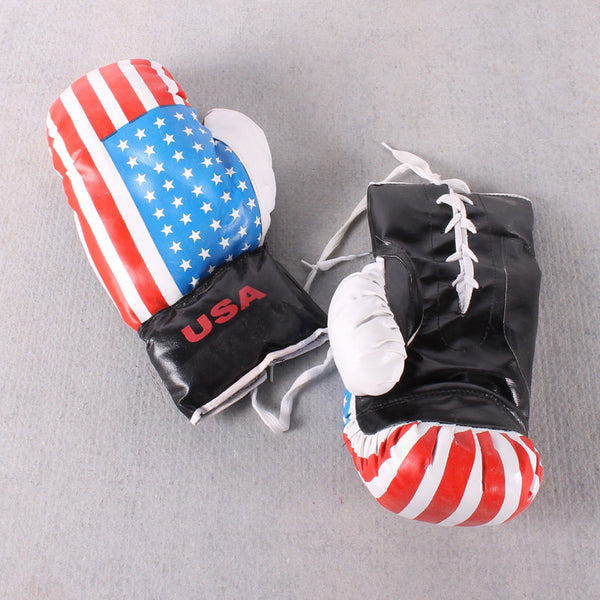 Boxing Glove USA