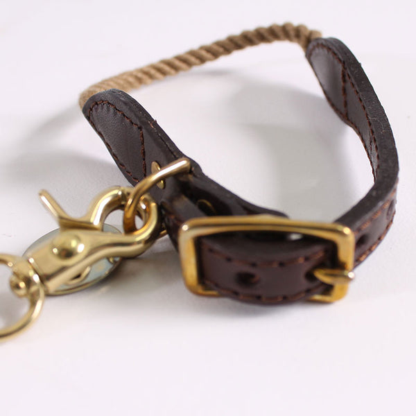 Dog Leash & Collar Anita
