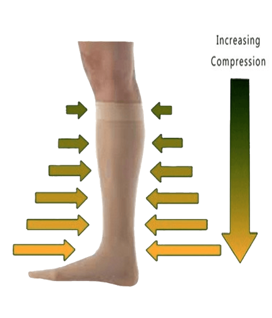 Maxx-Dri Silver Elite Compression Socks 3-Pack Promo 221B Resources LLC