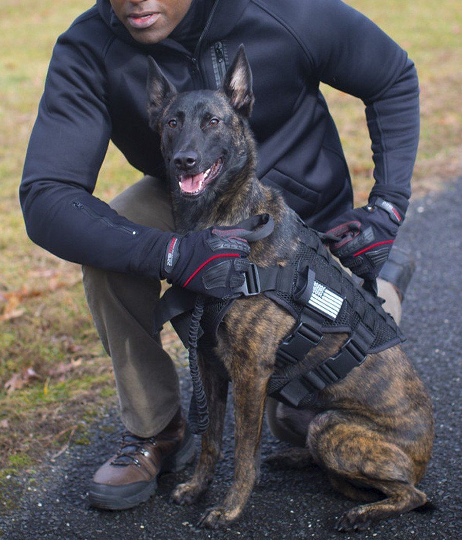 The Noxx Police K 9 Harness Breathable Safe Dog Harness