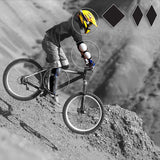 Mountain Bike Expert Rider Shop: high end Helmets, Goggles, Neck Braces, Gloves, Pads, Body Armor
