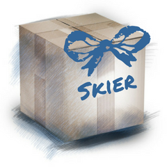 Gifts for a Skier