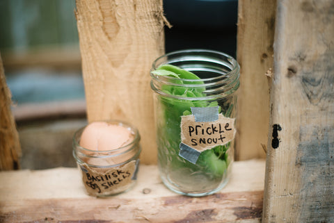 quarter pint and half pint mason jars filled with backyard treasures and labeled as potions for a Harry Potter potion shop