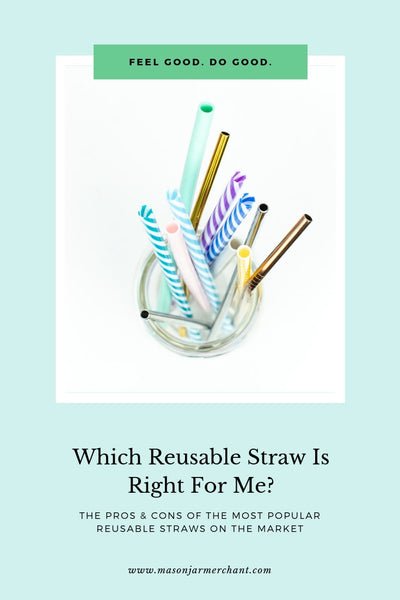 Which Reusable Straw Is Right For Me? A guide to reusable straws.