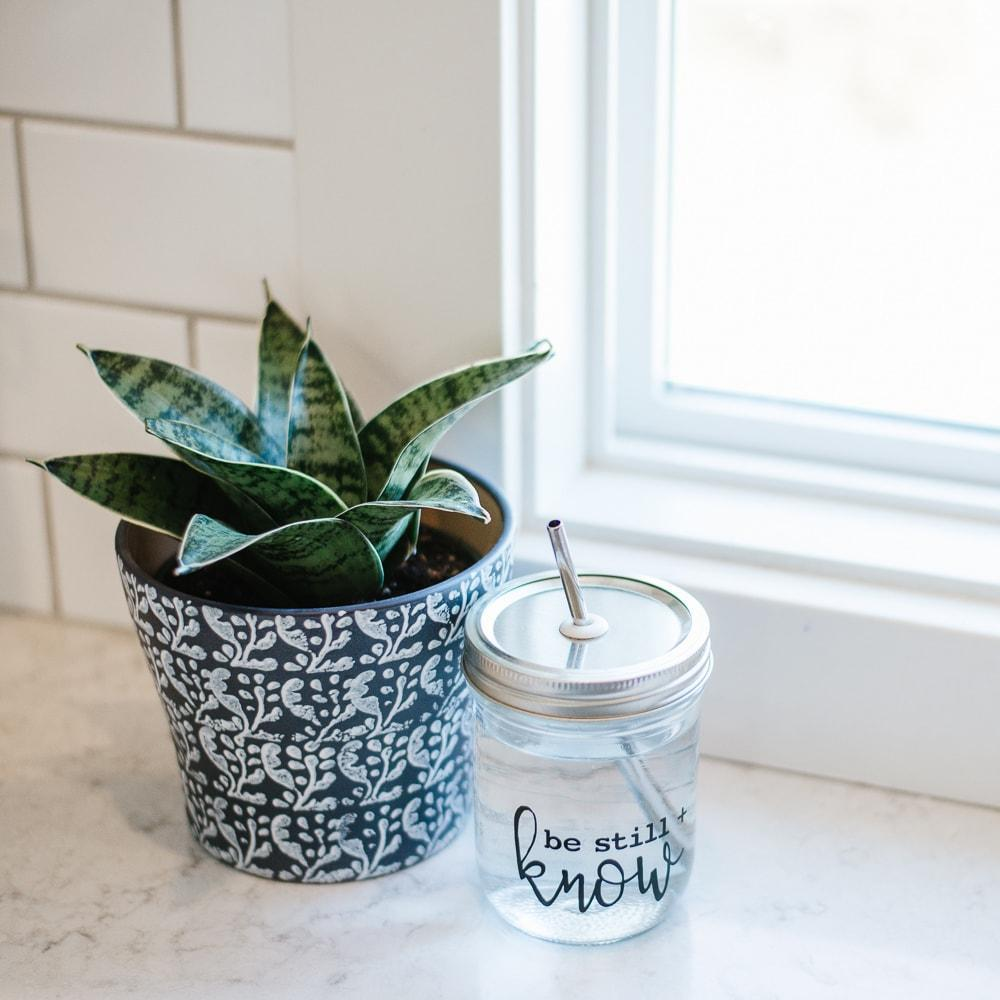 reusable water bottle with stainless steel straw next to snack plant in navy and white planter