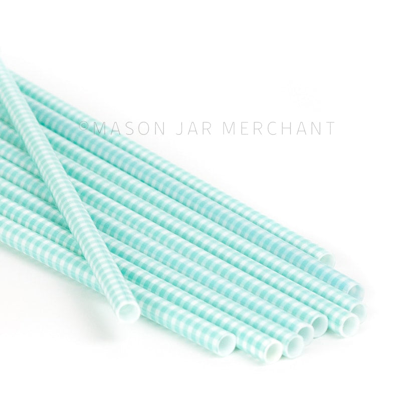 Aqua gingham patterned BPA-free reusable plastic straws against a white background
