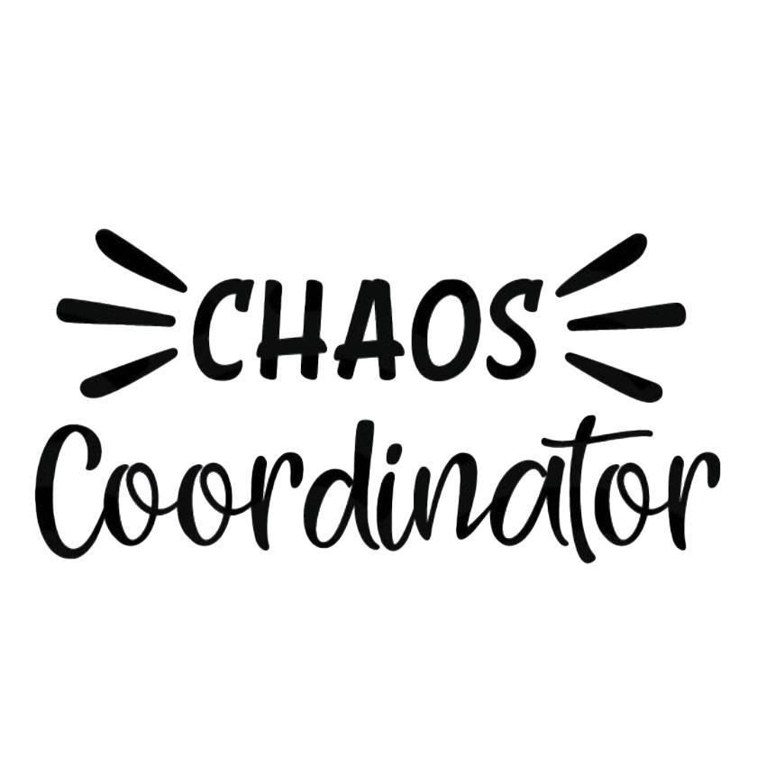 chaos coordinator reusable tumbler with reusable straw for teachers