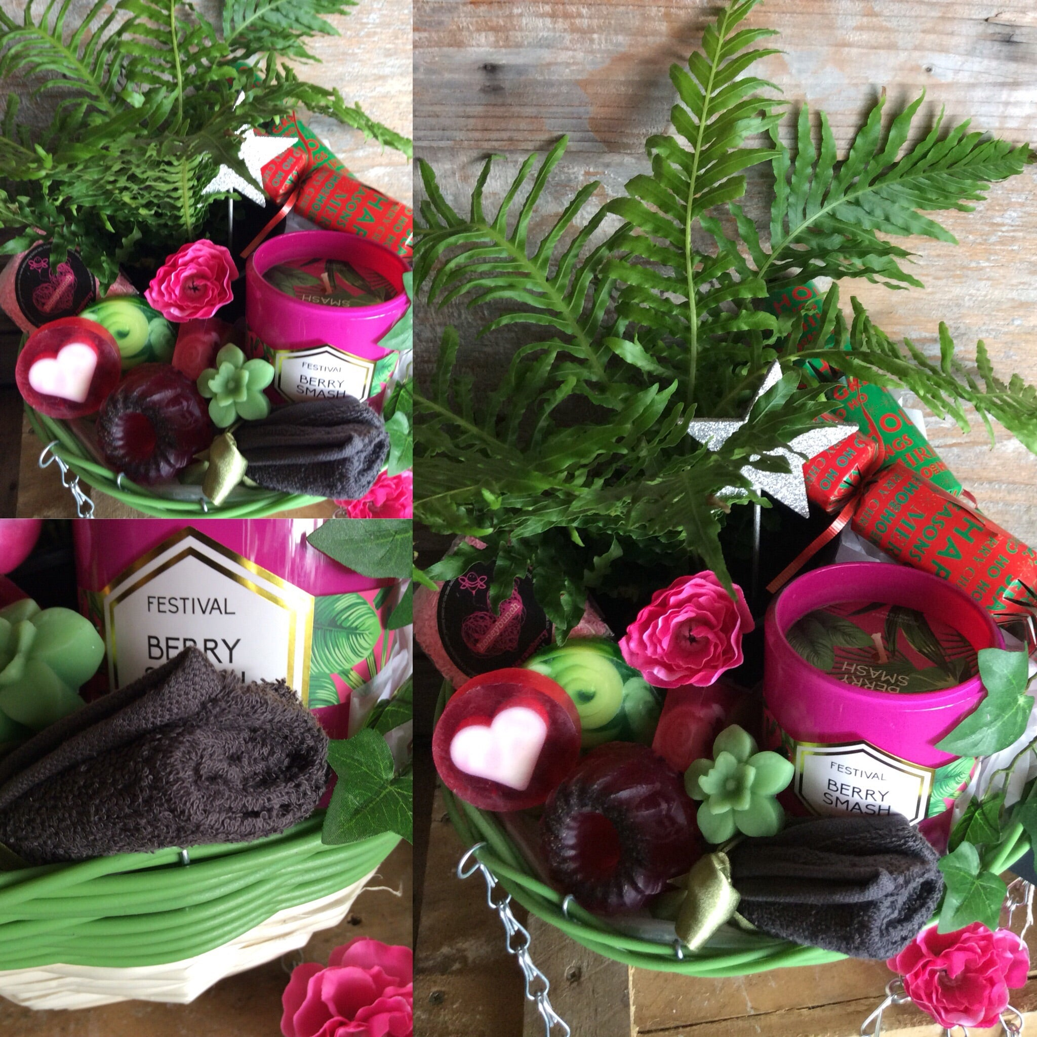 Berry merry happy Re'ferns' pamper plant hamper