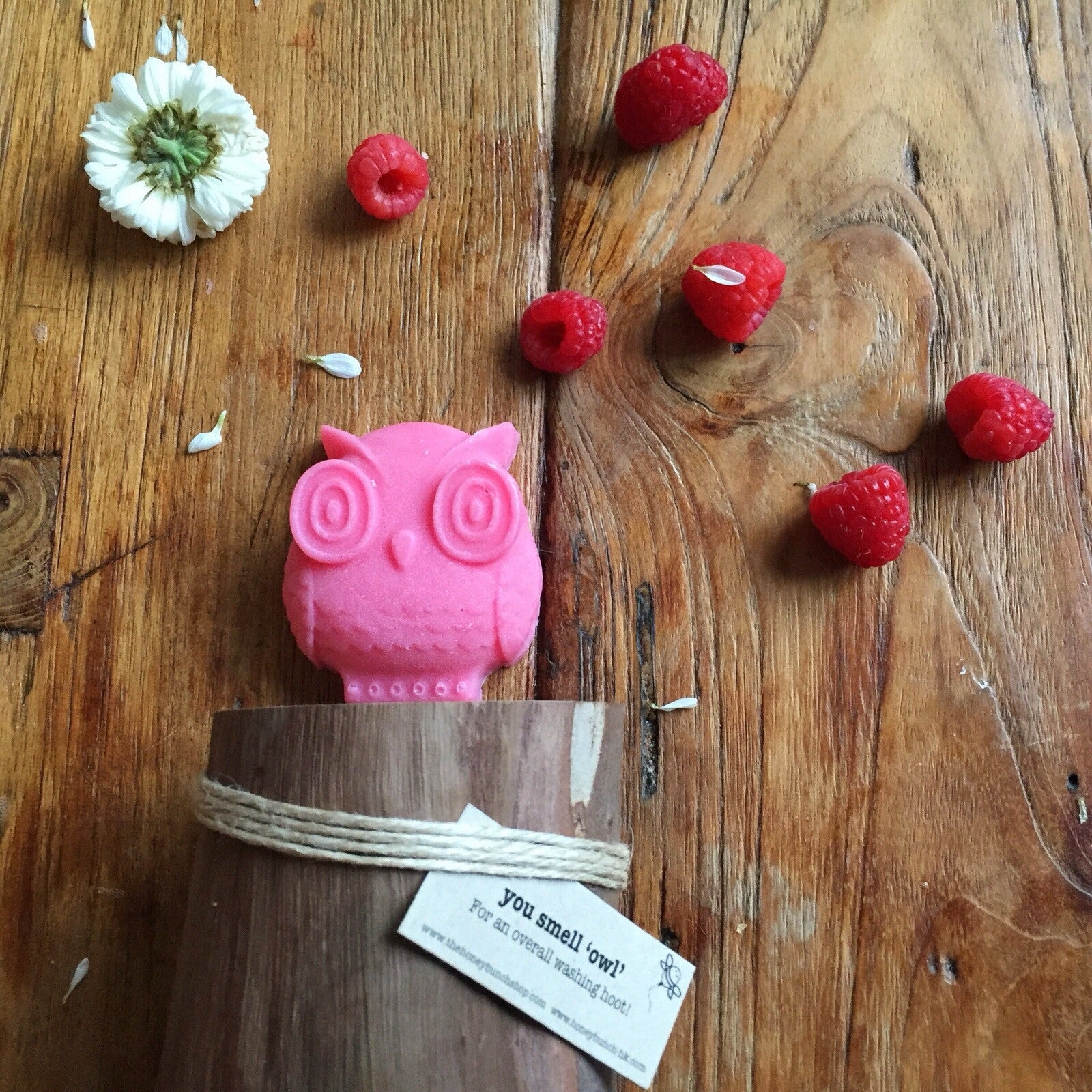 Indulge raspberry 'you smell owl' soap ...