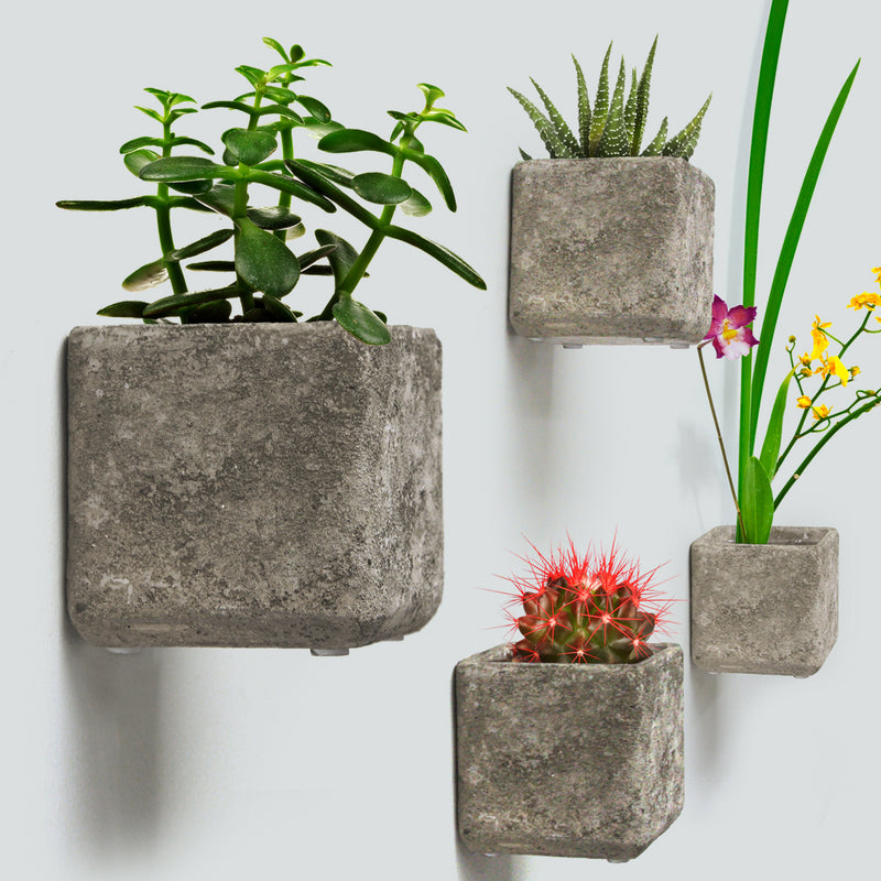 "Wall Hanging Concrete 5.5"" Planter"