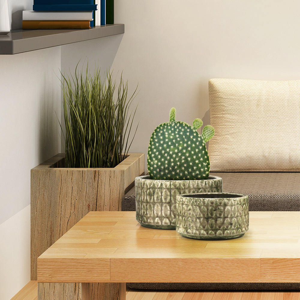 Scaled Ceramic Planters