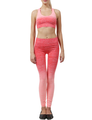 LIGHT WEIGHT FUNCTIONAL SEAMLESS BRA TOP LONG LEGGINGS ACTIVE SET NEWWAS01