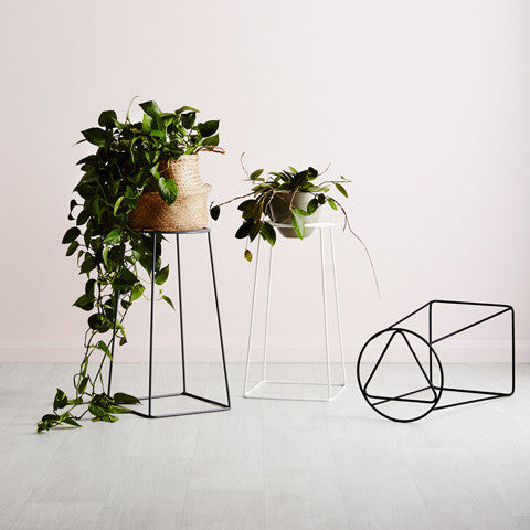 Ivy muse foundation plant stand design twins - Steel pot plant stands ...