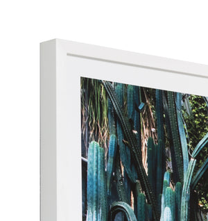 Cactus Greenhouse Framed Print