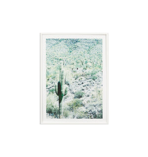Cactus Hill Framed Print