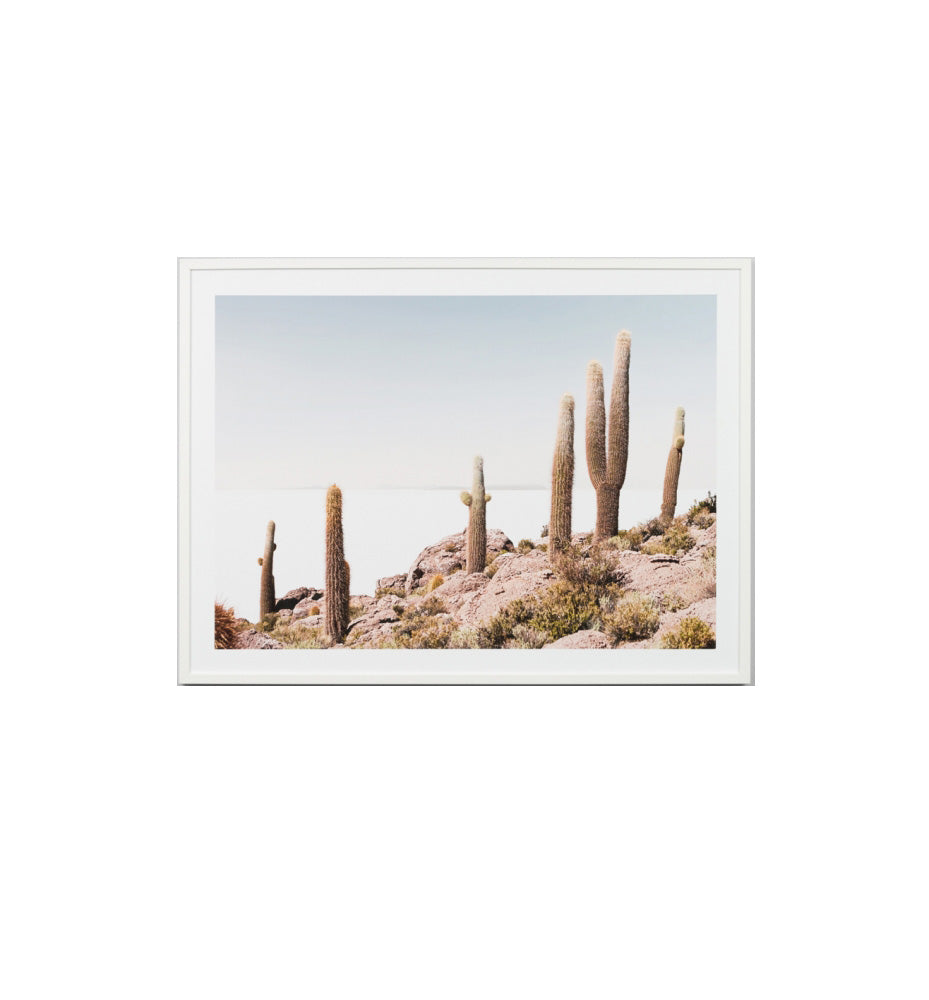 Cactus View Framed Print