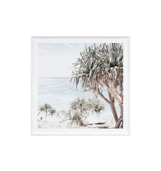 Coastal Palms Framed Print