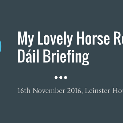 Dáil Briefing