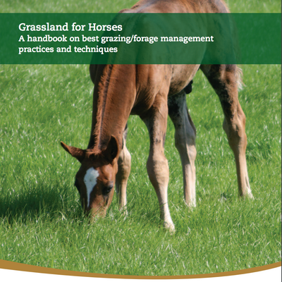 Teagasc advice on Grassland for Horses