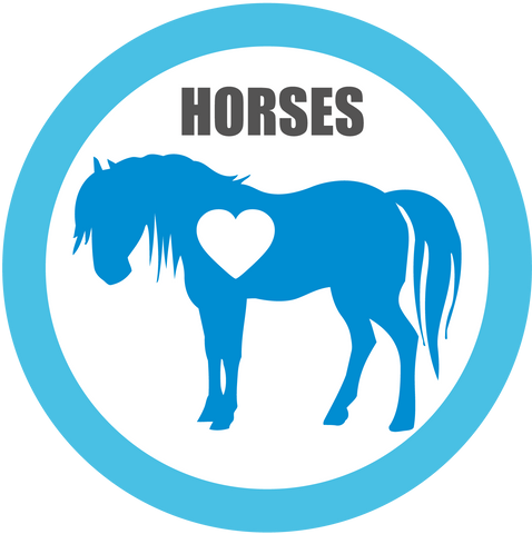 Horses for Adoption